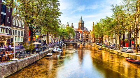 Нидерландов