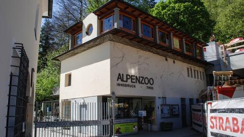 Альпийский зоопарк