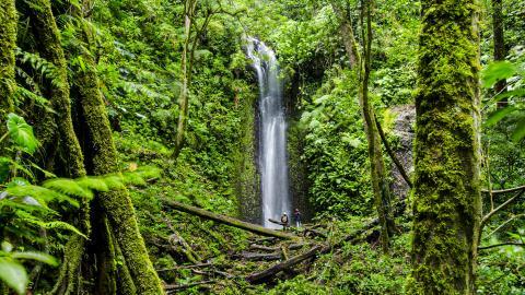Национальный парк Ла Амистад