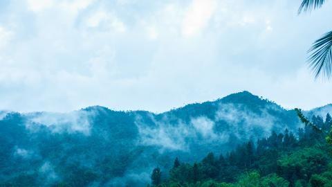 Нацпарк Голубые Горы