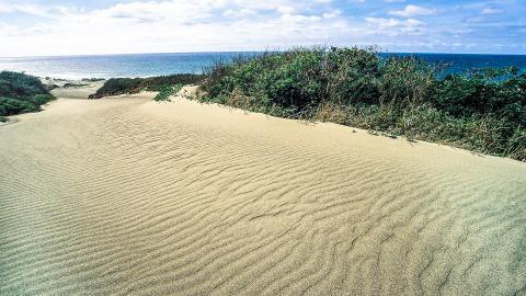 Парк песчаных дюн (Сигатока-Сенд-Дюнз)